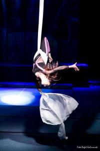 festiwal gimnastyki i akrobatyki sportowej w żorach (16) (Copy)
