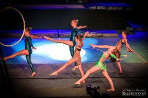 festiwal gimnastyki i akrobatyki sportowej w żorach (22) (Copy)