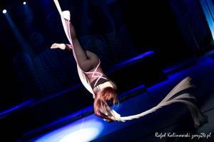 festiwal gimnastyki i akrobatyki sportowej w żorach (47) (Copy)