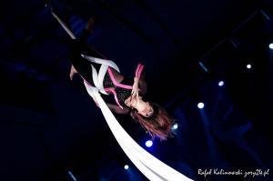 festiwal gimnastyki i akrobatyki sportowej w żorach (48) (Copy)