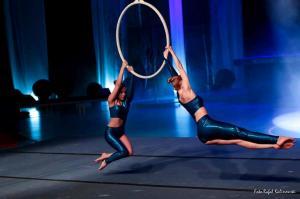 festiwal gimnastyki i akrobatyki sportowej w żorach (6) (Copy)
